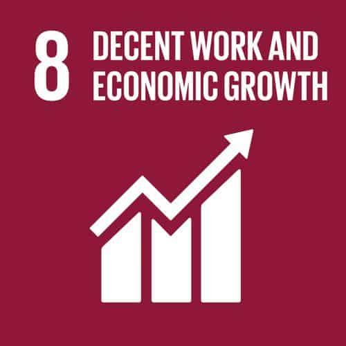 SDG 8 Employment